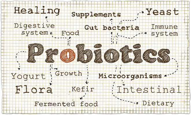 probiotics-word-cloud