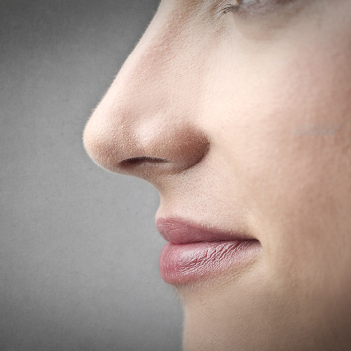Womans face in profile zoomed in on nose and mouth
