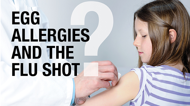 Egg Allergies and The Flu Shot