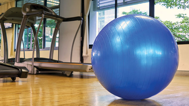 Exercise ball and treadmill